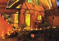 Rainforest Tree House, Costa Rica