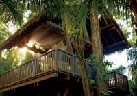Dorado Beach Hotel: Spa θεραπείες σε ένα κατάφυτο δεντρόσπιτο