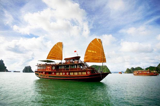 The-Golden-Lotus-Cruise-518229