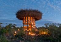 Στο Segera x Nay Palad Bird Nest Hotel μπορείς να κοιμηθείς σαν πουλάκι