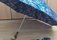 """Η μεγαλύτερη """"σπαστή"""" ομπρέλα βροχής από J&E UMBRELLAS"""