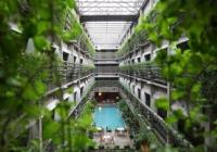 Eco-friendly ξενοδοχεία: η τάση στη βιομηχανία της φιλοξενίας!