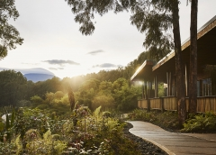 ONE&ONLY GORILLA'S NEST, Rwanda: Ένα μέρος μαγευτικό
